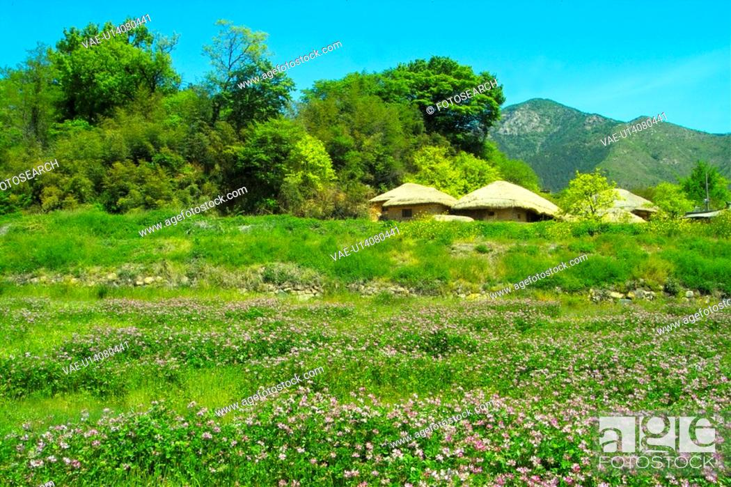 Stock Photo: scenery, field, landscape, house, nature.