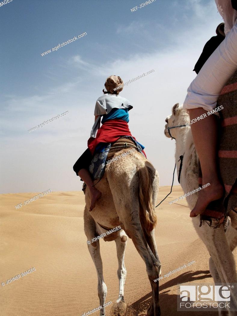 Stock Photo: People riding dromedaries in the desert, Tunisia.
