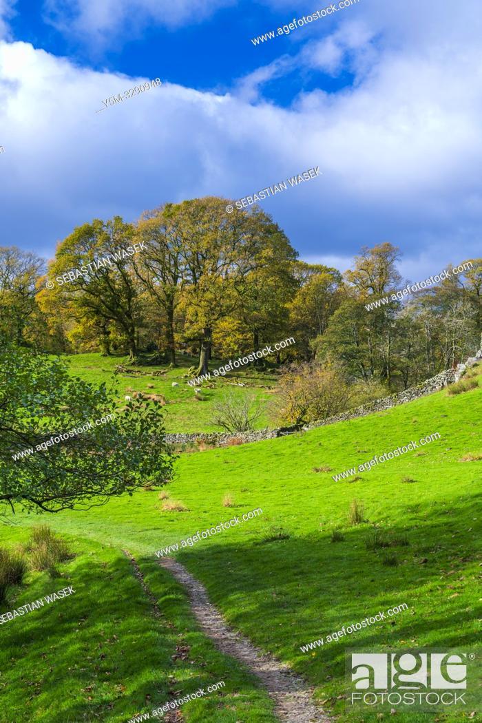 Stock Photo: Loughrigg Tarn Elterwater, Lake District National Park, Cumbria, England, UK, Europe.