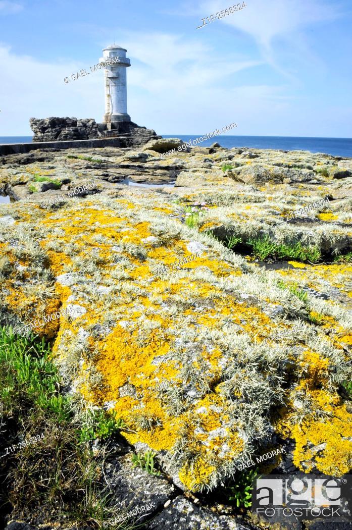 Stock Photo: Ar Guéveur Lighthouse on Sein island in Brittany.