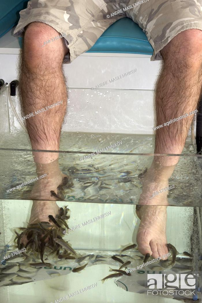 Stock Photo: Fish spa in Malta with Garra Rufa fish.