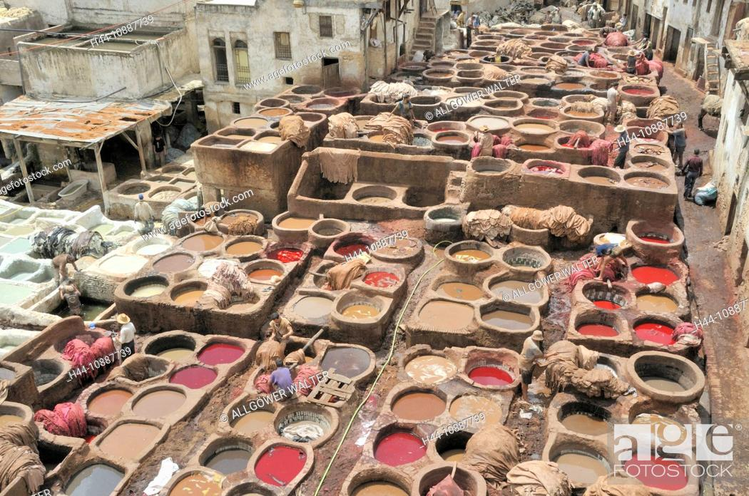 Stock Photo: Africa, Morocco, Maghreb, North Africa, Fez, Fes, Chouara, tanner, tanning, dyer, craft, colorfully, leather, tannic acids, environment, lye.