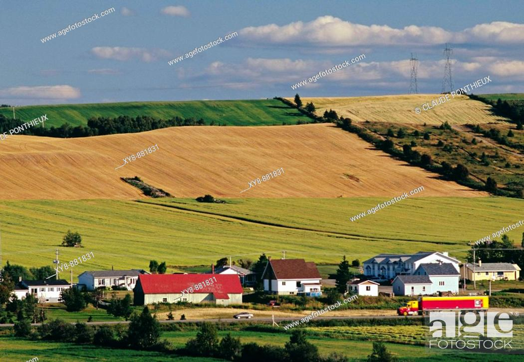 Stock Photo: Fields and Houses.