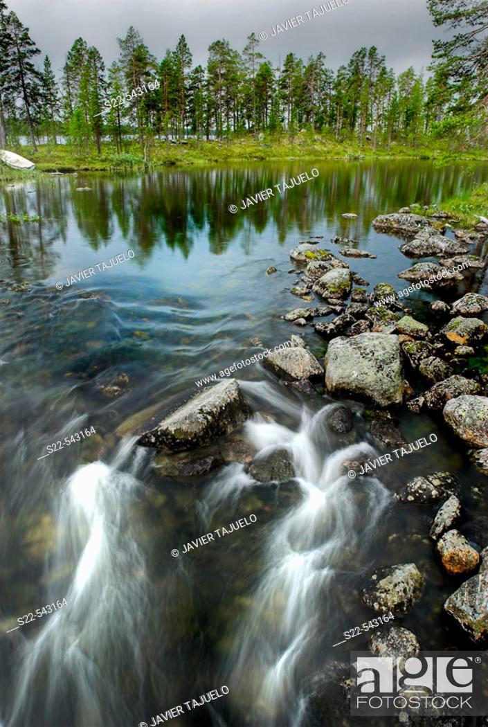 Stock Photo: River. Ovre Pasvik Natural Park, Norway.