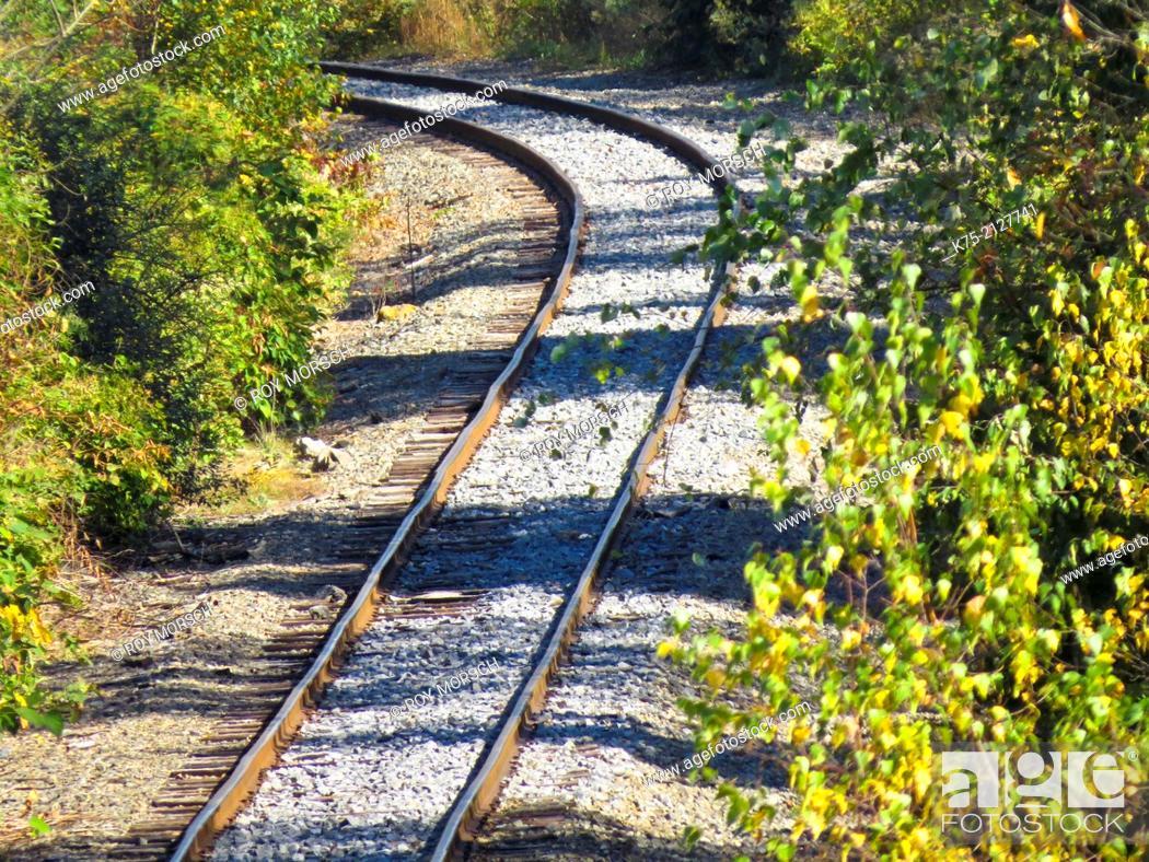 Imagen: rural railroad tracks.