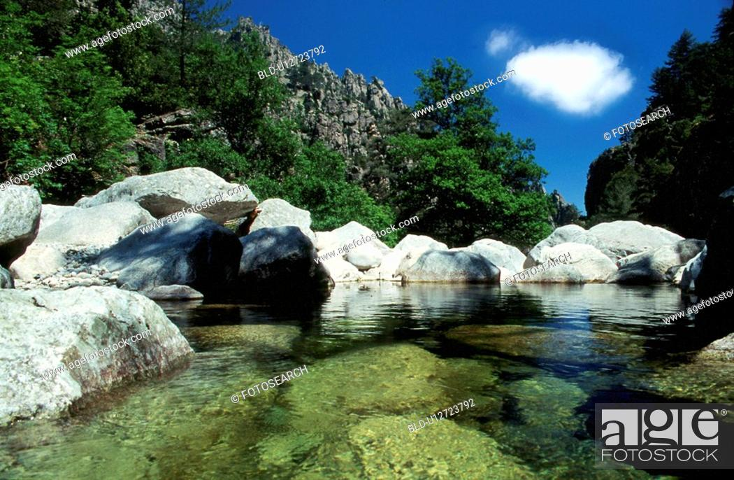 Stock Photo: Rock pond in the woods.