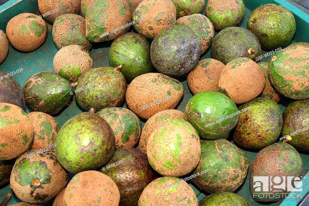 Stock Photo: Avocado, market, agriculture, Brazil.