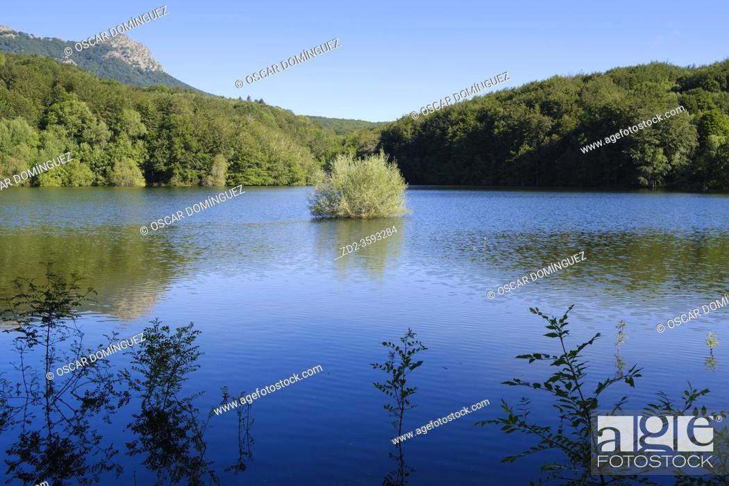 Stock Photo: View of Santa Fe Reservoir. Montseny Natural Park. Catalonia. Spain.