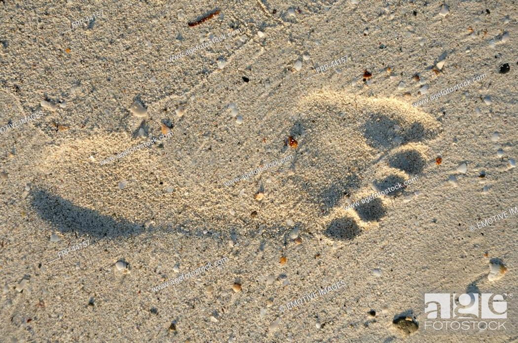 Stock Photo: Footprint in the sand.