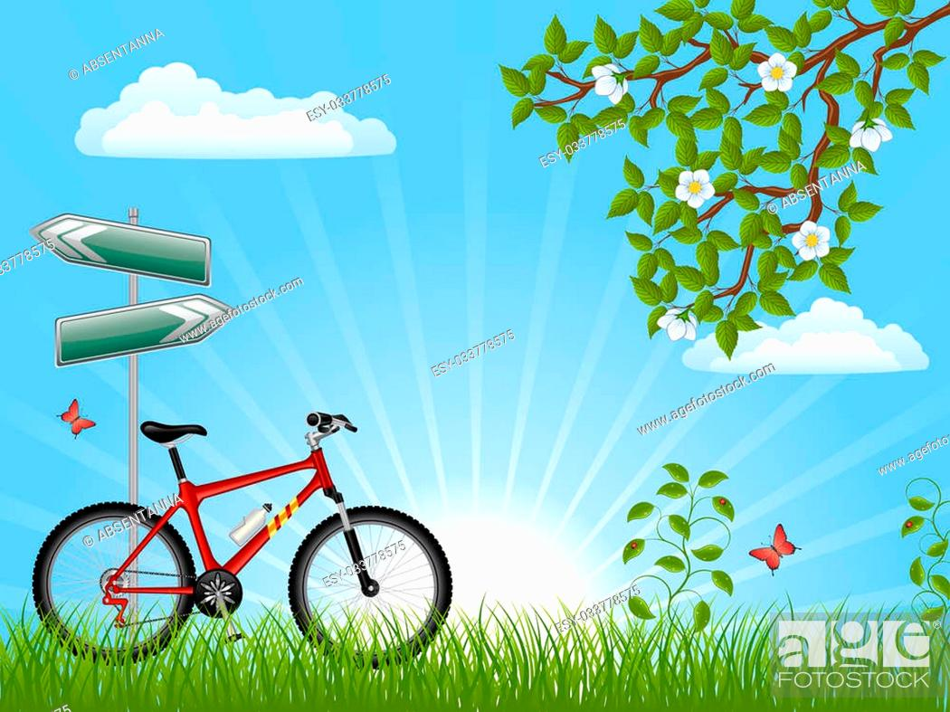 Stock Photo: Summer landscape with a bike.