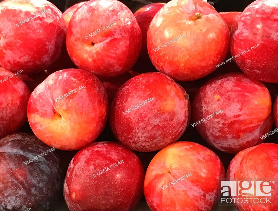Stock Photo: Red plums.