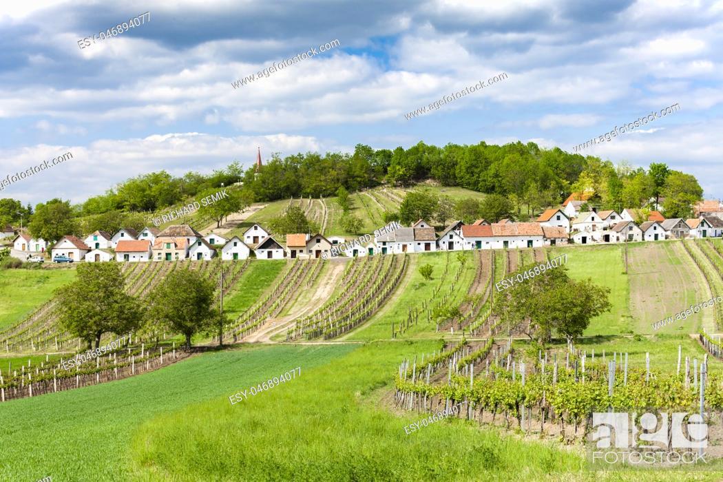 Stock Photo: wine cellars with vineyards, Galgenberg, Lower Austria, Austria.