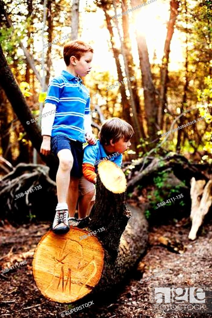 Stock Photo: Boys hiking in a forest.