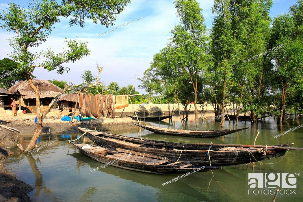 Imagen: Fishing boat at Sundarban A UNESCO World Heritage Site, the Sundarbans is the largest mangrove forest in the world and lies on a delta at the mouth of the.