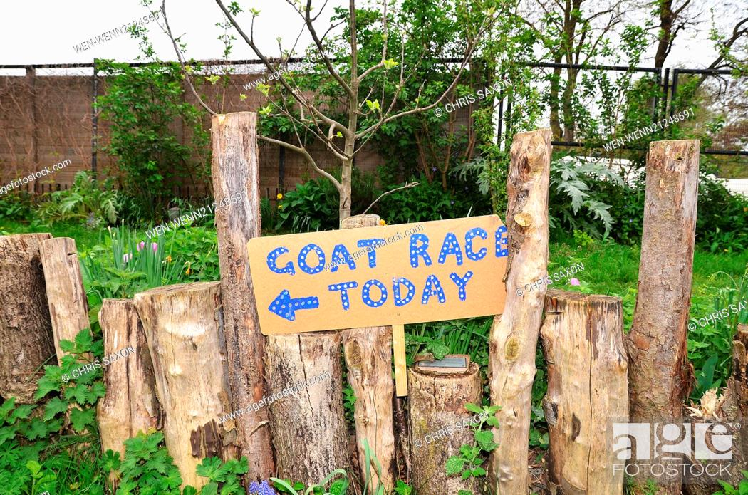 Imagen: Goats compete during the Oxford and Cambridge Goat Race at Spitalfields City Farm in East London. The annual event, which takes place on the same day as the.