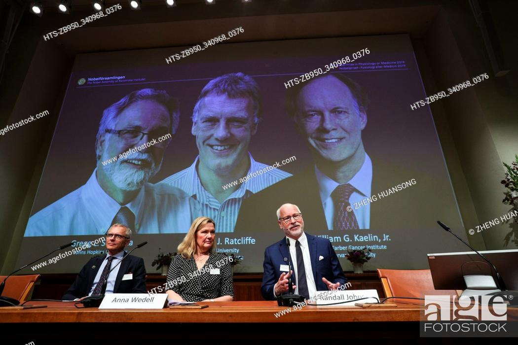 Stock Photo: (191007) -- STOCKHOLM, Oct. 7, 2019 () -- Photo taken on Oct. 7, 2019 shows the announcement of the 2019 Nobel Prize in Physiology or Medicine at the Karolinska.