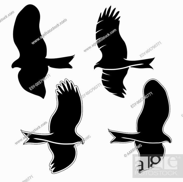 Stock Vector: Eagle symbols and tattoo, vector illustration.