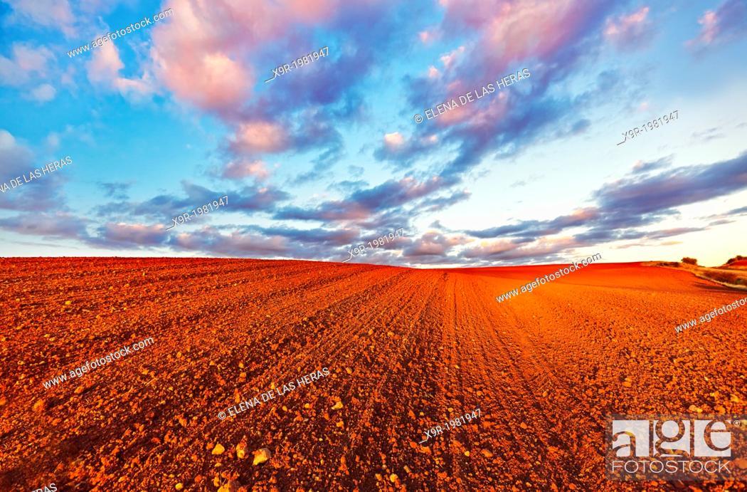 Photo de stock: Red ploughed field landscape. Northwest of Guadalajara province. Castille La Mancha. Spain.