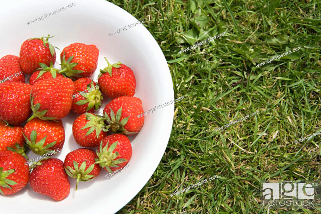 Stock Photo: Bowl of strawberries on the lawn.