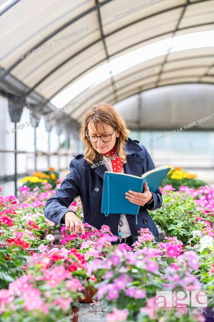 Imagen: Female manager working in a plant nursery.