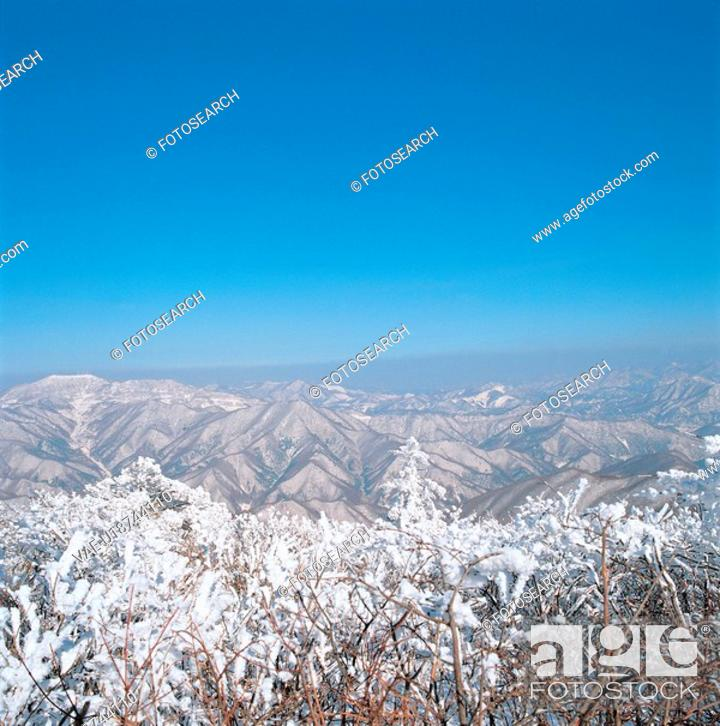 Stock Photo: snowscape, snow, natural phenomenon, winter, mountain, scenery, tree.