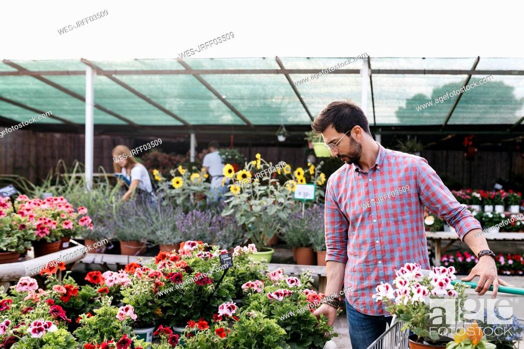 Imagen: Customer of a garden center choosing a flower.