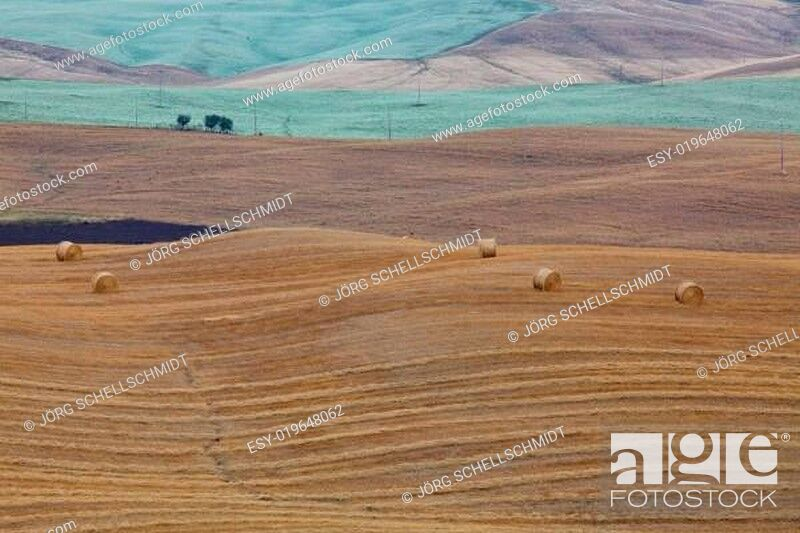 Stock Photo: Felder in der Toskana.