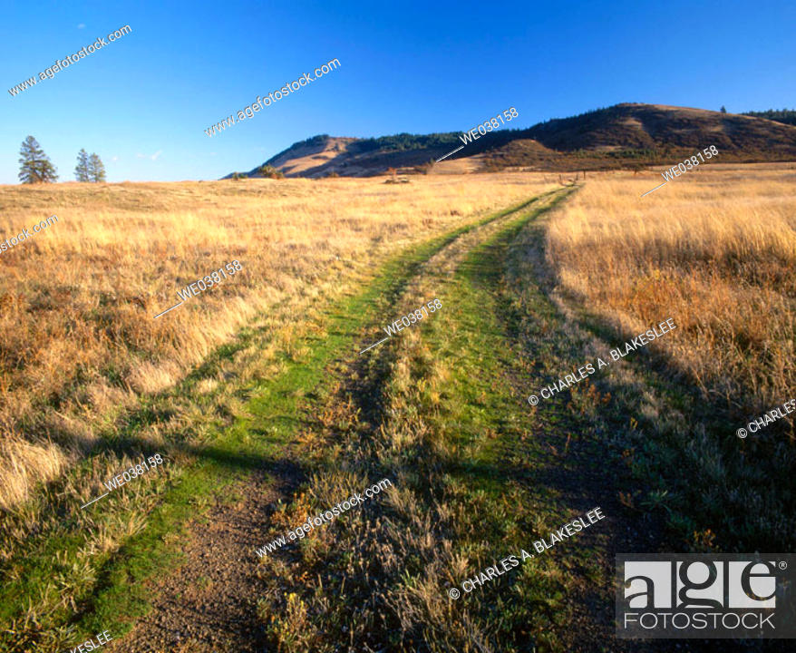 Stock Photo: Country road going over Rowena Plateau, Columbia River Gorge National Scenic Area in October. Wasco County, Oregon, USA.