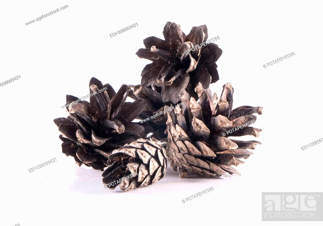 Stock Photo: Image of brown cones isoleted close-up.