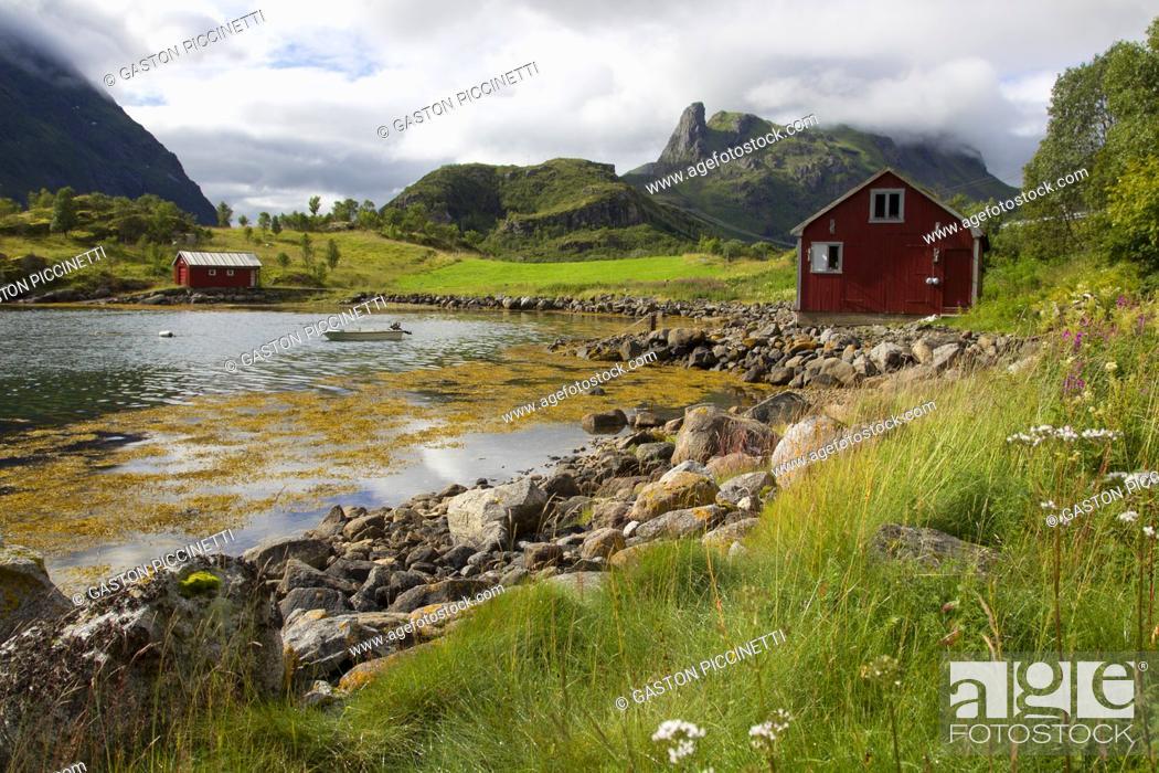 Imagen: Moskenesøya island, Lofoten, Nordland county, Norway. .