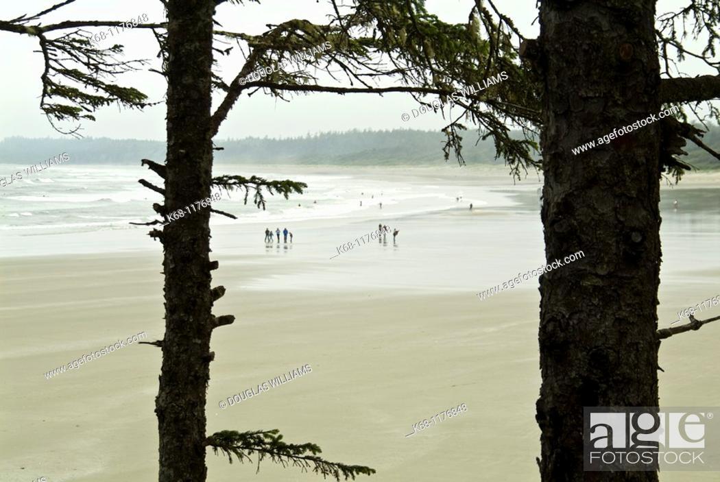 Stock Photo: beach near Tofino, West Coast, Vancouver Island, British Columbia, Canada.