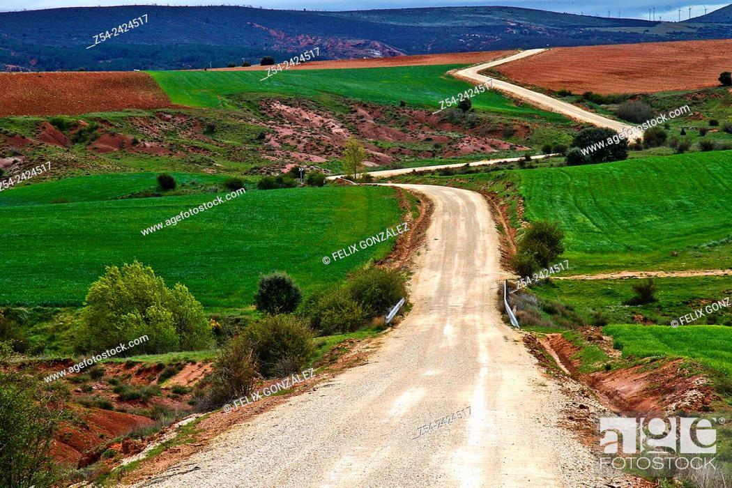 Stock Photo: Path near Tiermes, Segovia, Castile and Leon, Spain.