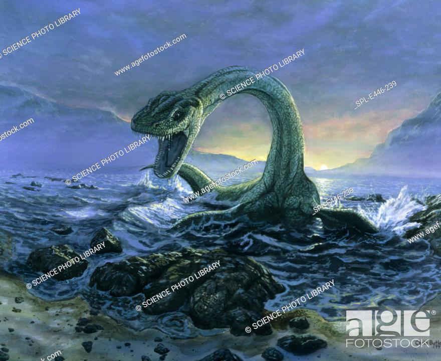 Stock Photo: 'Elasmosaurus dinosaur. Artwork of Elasmosaurus, a marine dinosaur (plesiosaur) coming ashore. Elas- mosaurus ('plated reptile') had a long neck with a.