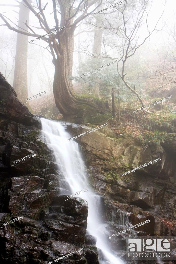 Stock Photo: Waterfall with a tree in the background. Shot in the mountains near Kawaguchiko Japan.