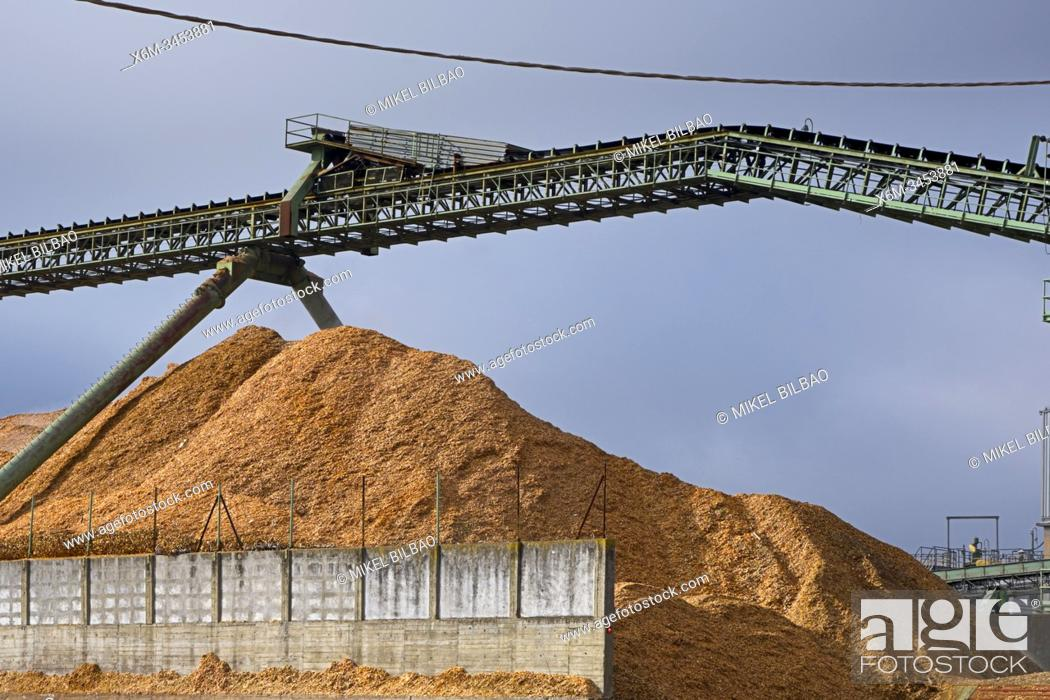 Imagen: Pile of sawdust in a wood factory. Navarre, Spain, Europe.