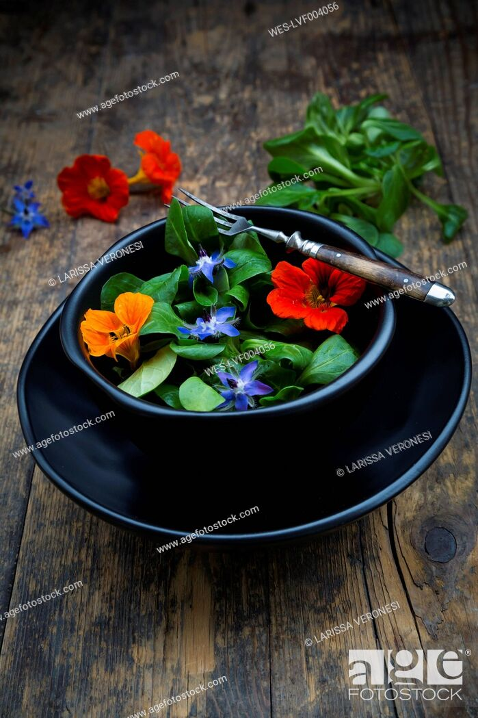 Stock Photo: Bowl of lamb's lettuce with blossoms of borage and Indian cress.