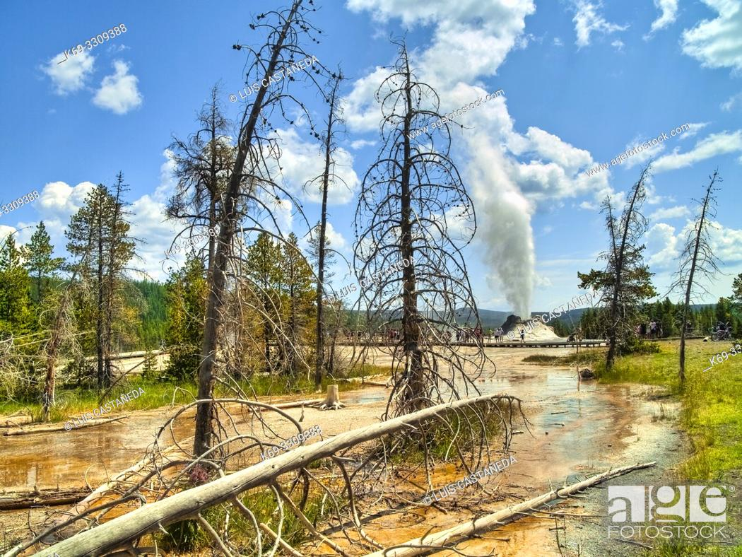 Stock Photo: Castle Geyser is a cone geyser in the Upper Geyser Basin of Yellowstone National Park. It is noted for the particularly large sinter deposits.