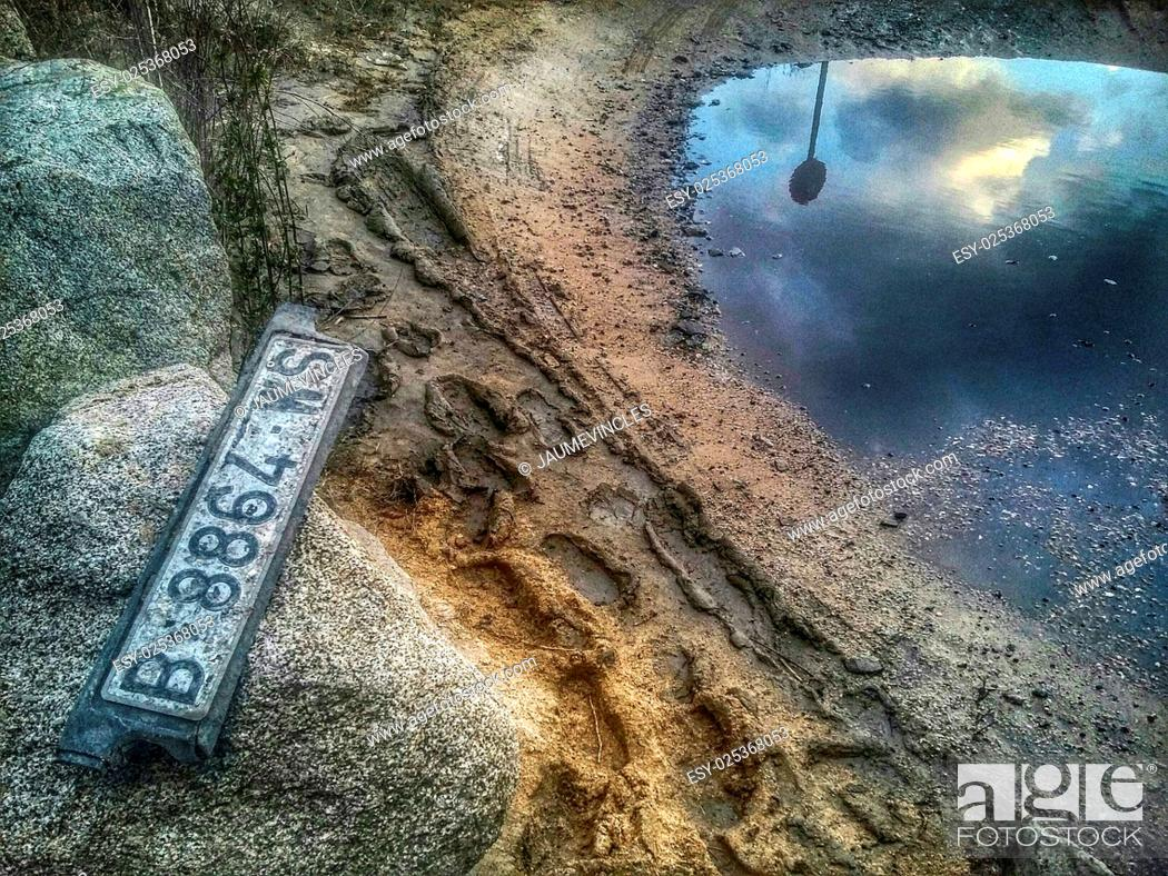 Imagen: Abandoned car license plate and reflection in puddle. Arenys de Mar, Maresme, Barcelona province, Catalonia, Spain.