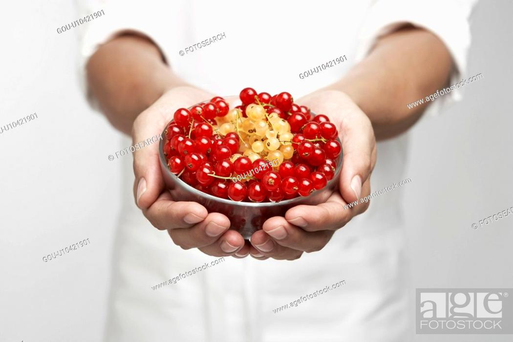 Stock Photo: Chef holding bowl of red and white currants (mid section).