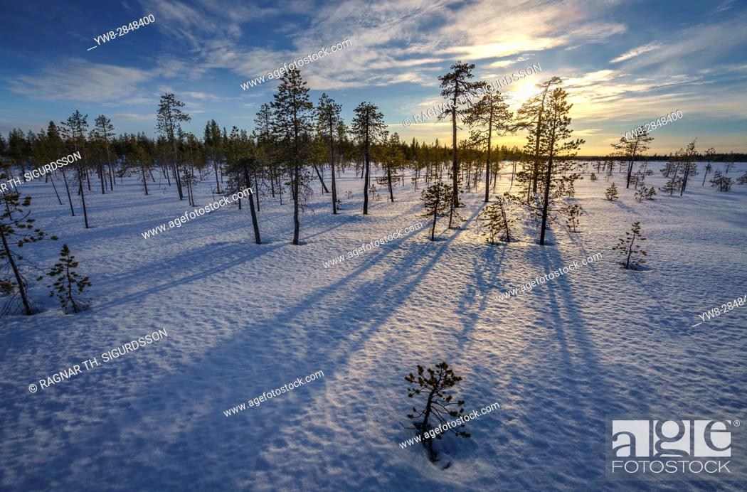 Stock Photo: Winter landscape, Lapland, Sweden.