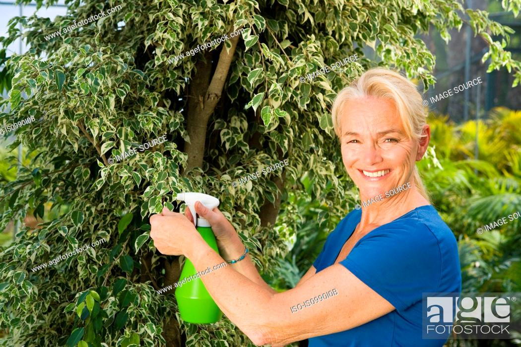 Stock Photo: Mature woman spraying plant.