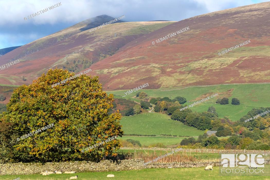 Stock Photo: Cumbrian landscape near Threlkeld, Lake District National Park, Cumbria, England, UK, Europe.