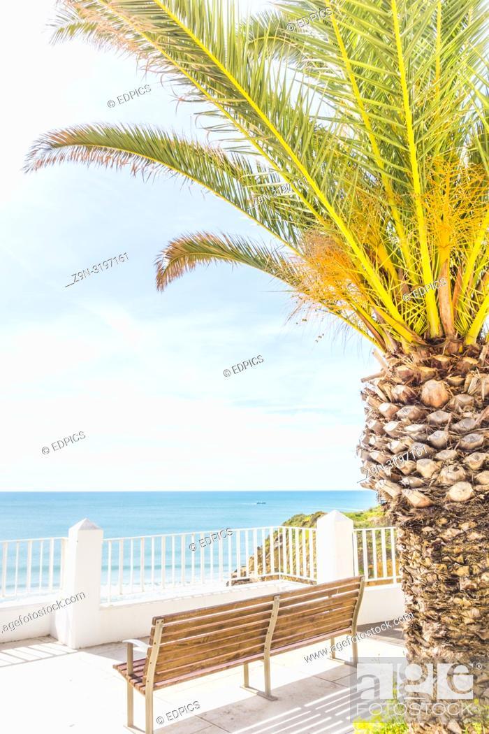 Stock Photo: bench and palm tree at seaside promenade, albufeira, algarve, portugal.