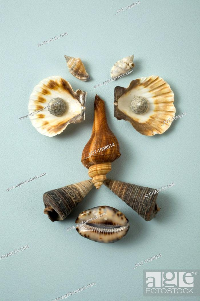 Stock Photo: Seashells arranged into a face.