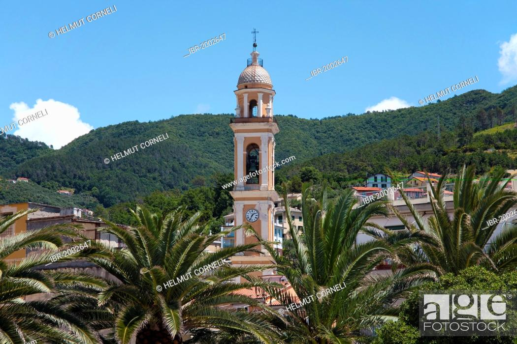 Stock Photo: Palms and bell tower of the church of Santa Croce, 18th century, built on the foundations of the church from 1100, old town, Moneglia, Genoa Province, Liguria.