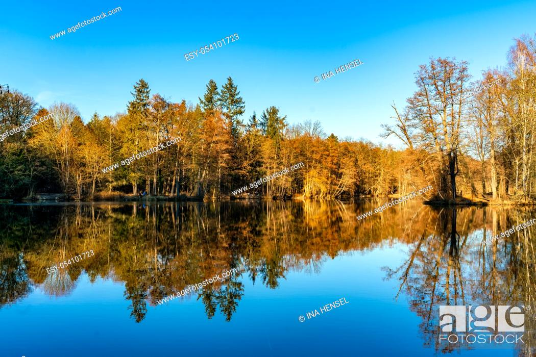 Stock Photo: Reflections of trees in a lake at castle Dammsmühle with a cloudless blue sky and blue water.