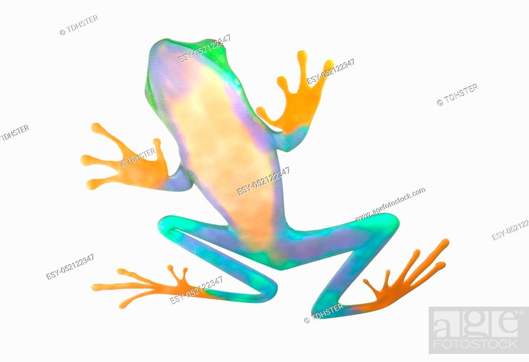 Stock Photo: red eyed tree frog from tropical rainforest of Costa Rica isolated on white. Beautiful green and blue treefrog is an exotic animal from the rain forest.