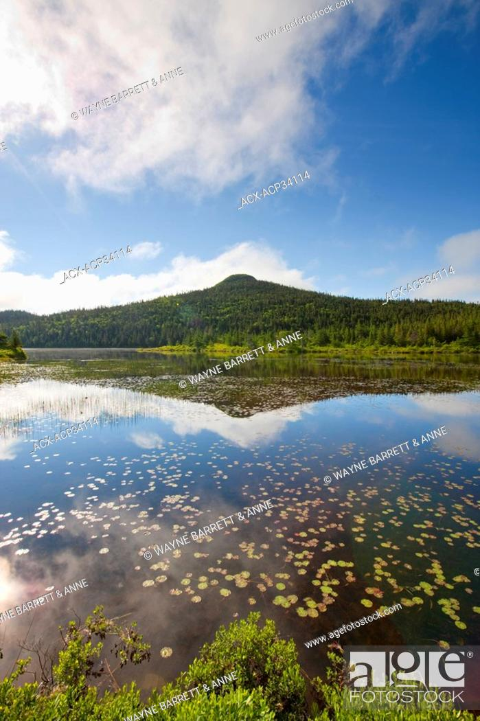 Stock Photo: Pond in spring time near Colbert's Cove, Newfoundland and Labrador, Canada.