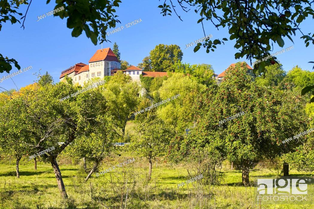 Stock Photo: Creuzburg castle with fruit trees in Creuzburg, Thuringia, Germany.