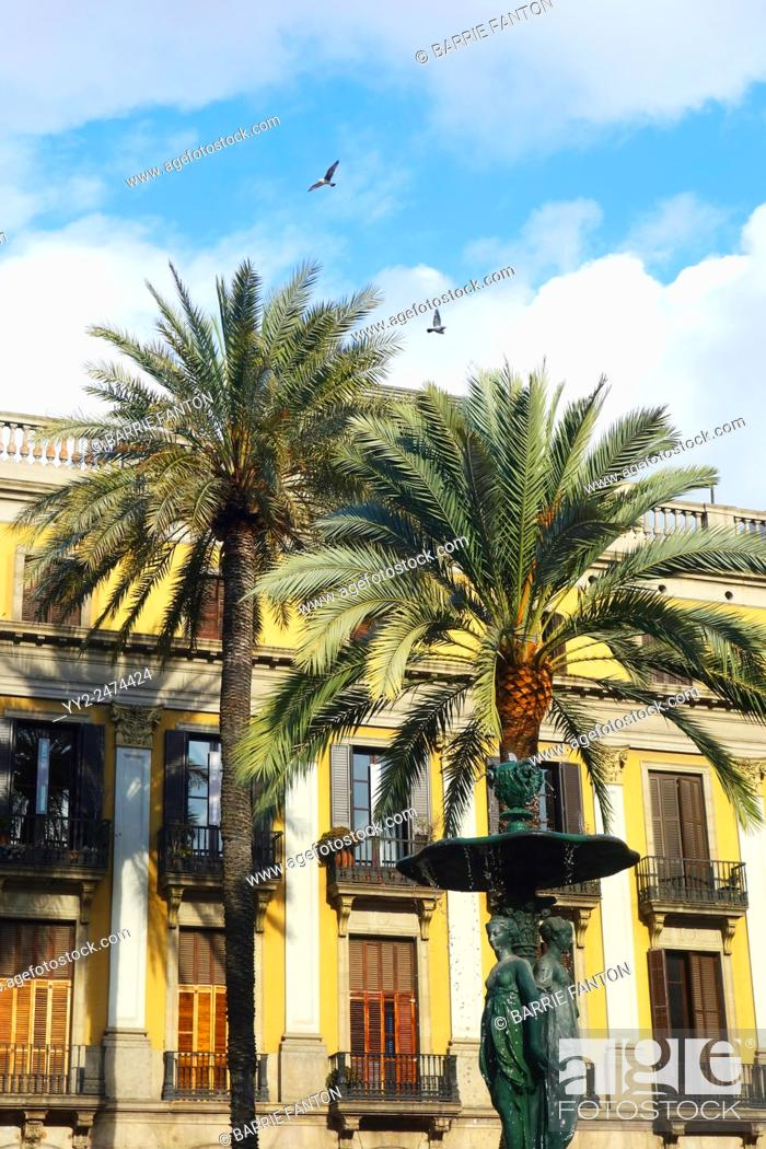 Imagen: Palm Trees, Placa Reial, Barcelona, Spain.